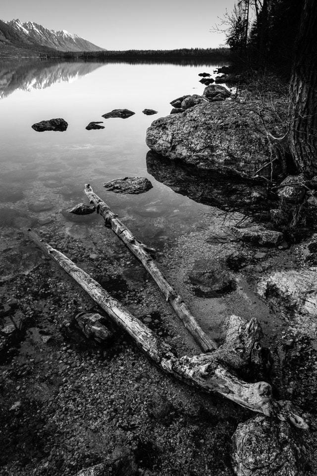 Boulders and a log on the shore of Jenny Lake.
