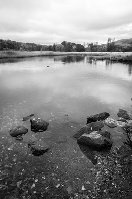 Rocks in a pond in Callander, Scotland.