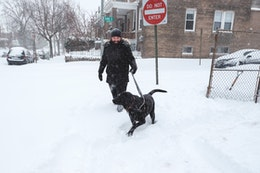A man and his owner going for a walk during a blizzard.