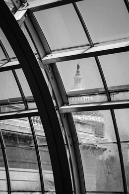 The United States Capitol, seen through the glass dome of the United States Botanic Garden.