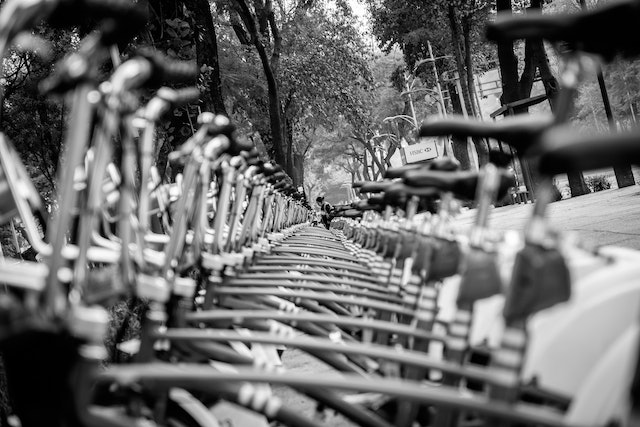 A row of EcoBici bikeshare bikes on the Paseo de la Reforma in Mexico City.