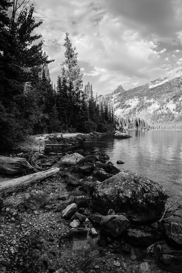 The shore of Jenny Lake. A large boulder and a fallen tree are in the foreground.