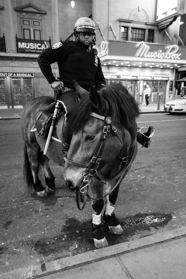 An NYPD officer on a horse in the Theater District of Manhattan.