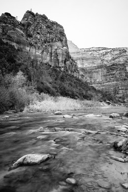 The Virgin River, flowing on the valley floor of Zion. In the background, The Organ can be seen.