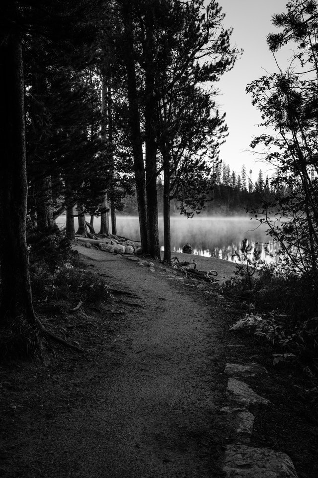 A curving trail near the shore of String Lake. In the background, the lake's surface is covered in mist.