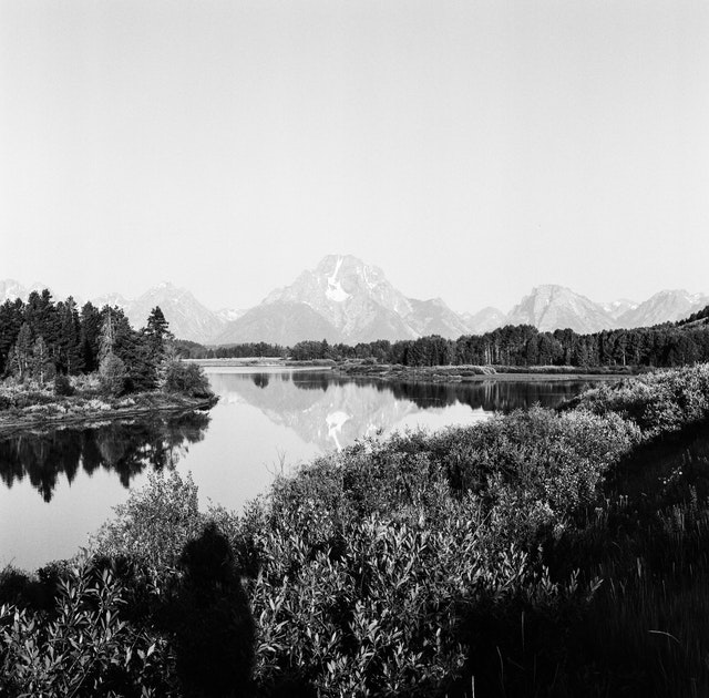 Mount Moran, seen from Oxbow Bend in the summer.
