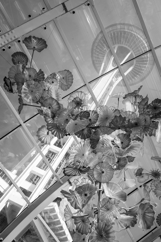 Chihuly glass flowers hanging from a glass ceiling with the Space Needle in the background, at the Chihuly Garden and Glass in Seattle.