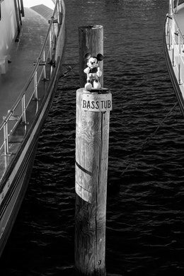 """A Mickey Mouse doll on a wooden pole with a """"Bass Tub"""" license plate at Fisherman's Wharf, San Francisco."""
