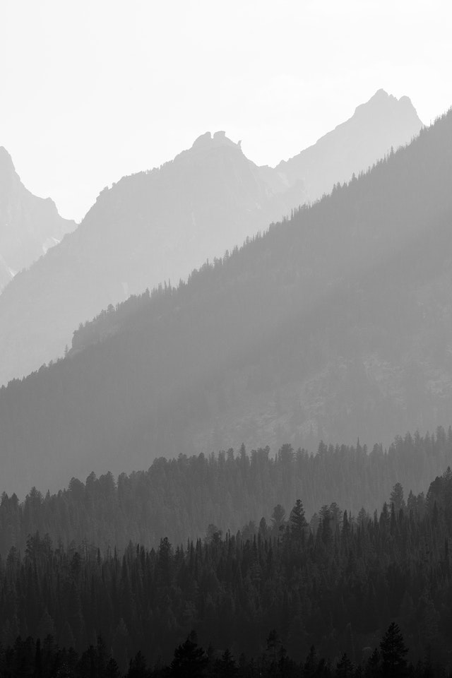 The Tetons, and pine forest at the foot of the mountains, seen through layers of wildfire smoke.
