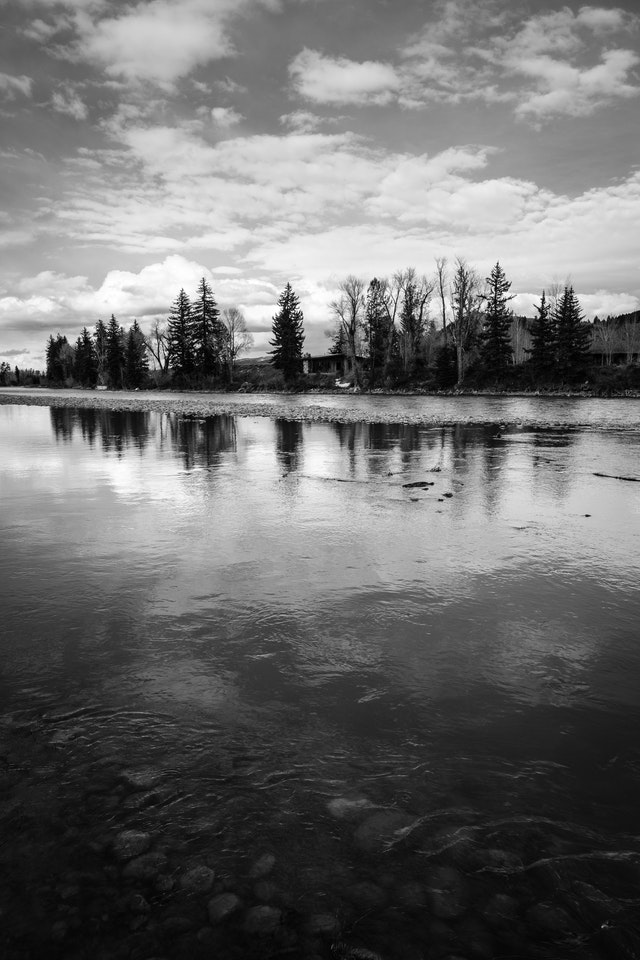 A line of trees and a cabin seen across the Snake River in Grand Teton National Park. In the foreground, pebbles under the water.