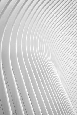 Detail of the ribs of the Oculus.
