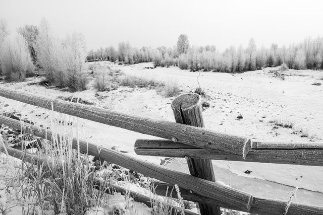 A wooden fence covered in frost in front of the Gros Ventre River, near Jackson, Wyoming.