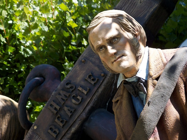 A statue of Charles Darwin.