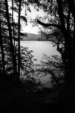 Lake Ocoee, seen through trees at Cherokee National Forest.