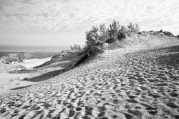 Sand dunes at Sleeping Bear Dunes National Lakeshore.