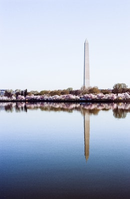 The Washington Monument and the Tidal Basin during the Cherry Blossom Festival.
