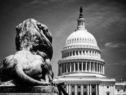 A lion from the U.S. Grant Memorial looking at the Capitol.