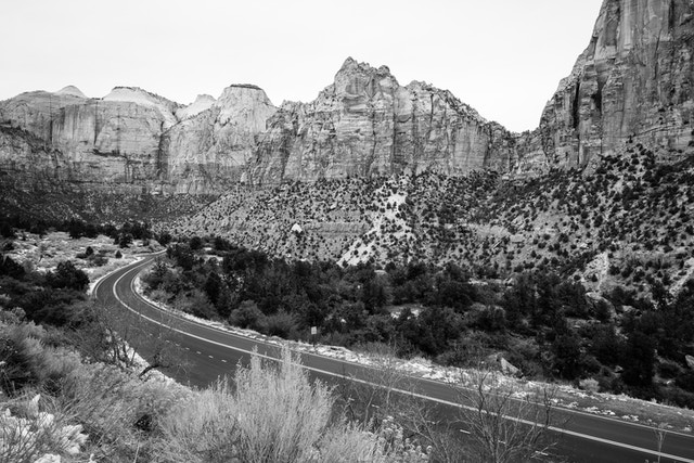 The Zion-Mount Carmel Highway, with the canyon walls in the background.