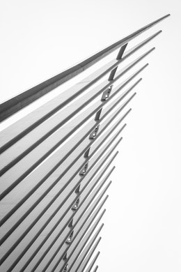 The ribs of the Oculus.