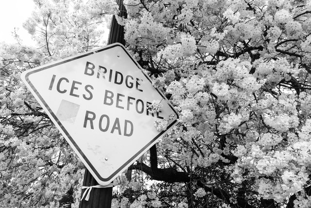 """A """"bridge ices before road"""" sign surrounded by cherry blossoms."""