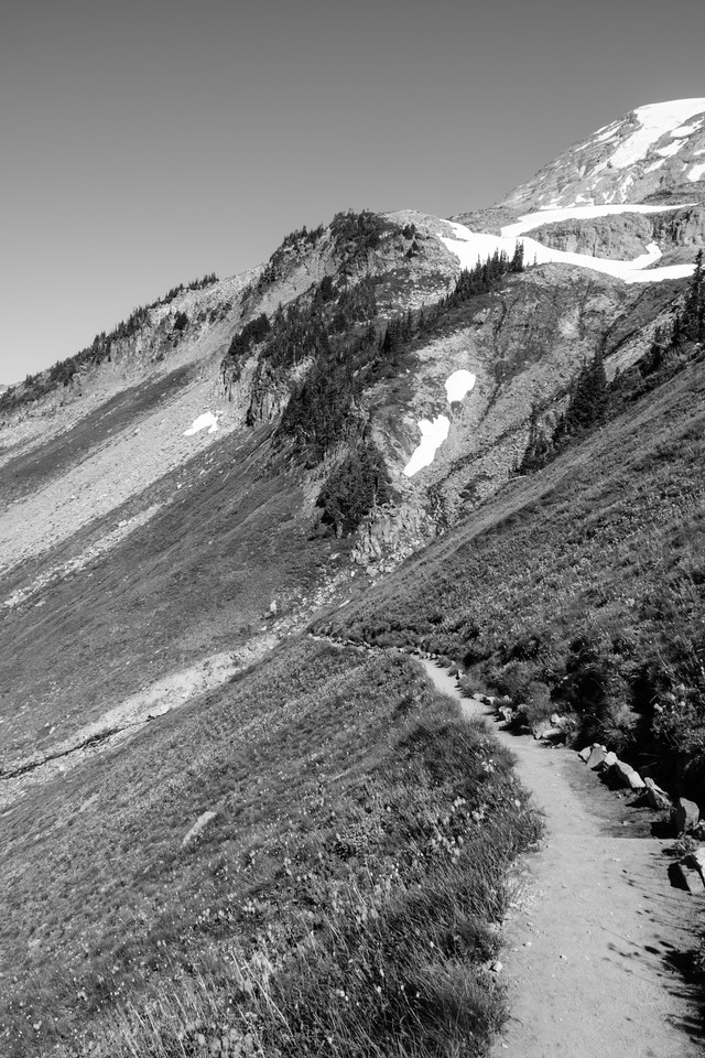 The Golden Gate Trail, seen along the side of a hill on Mount Rainier National Park.