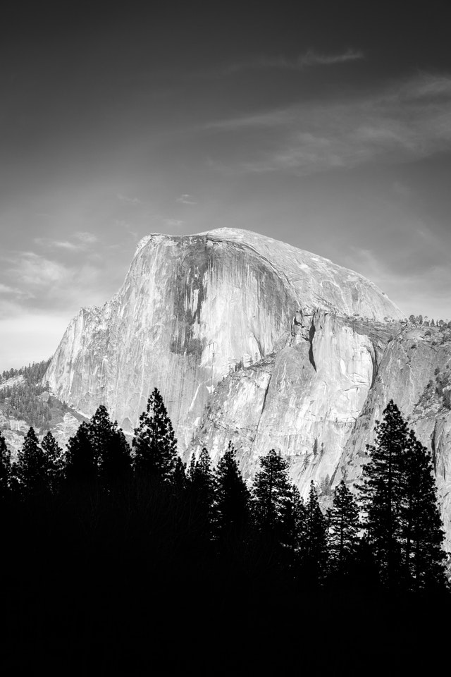 Half Dome, seen in black & white and framed by trees from a meadow in the Yosemite Valley at Yosemite National Park.