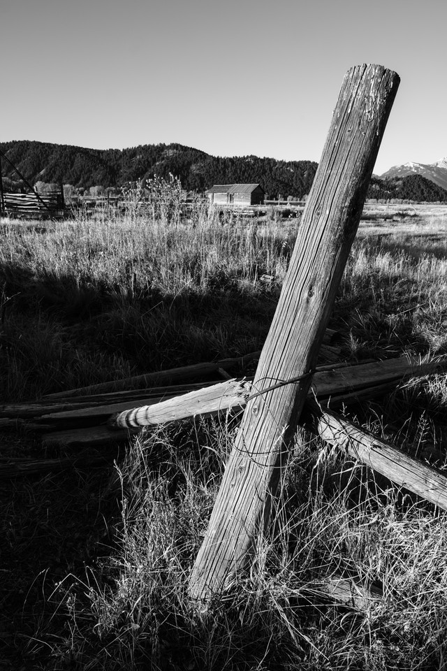 A partially collapsed wooden fence at Mormon Row in Grand Teton National Park.