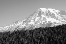 Mount Rainier, seen behind a forest, from Inspiration Point.