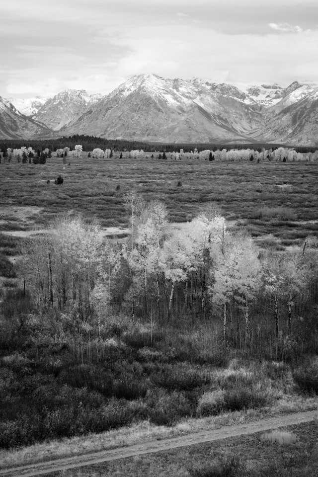 Willow Flats, seen from Lunch Tree Hill at Grand Teton National Park.