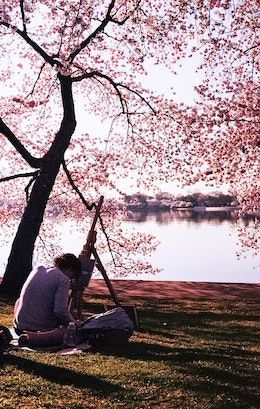 An artist painting a picture during the Cherry Blossom Festival.