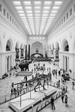 Main hall of the Field Museum in Chicago.