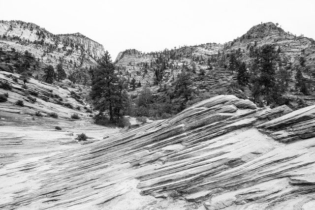 A landscape of sandstone and slickrock near the Zion-Mount Carmel Highway. In the foreground, a wave-like sandstone formation can be seen.