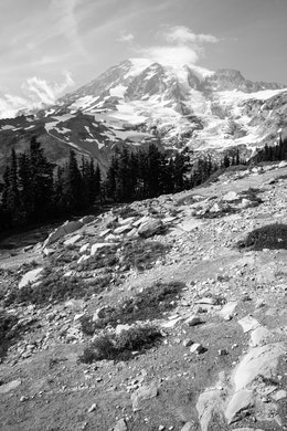 Mt. Rainier seen from the Deadhorse Creek Trail in Mt. Rainier National Park.