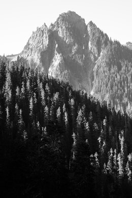 A peak in Mount Rainier National Park, seen behind some forests from Inspiration Point.
