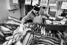 A man putting fish on display at the Maine Avenue Fish Market.