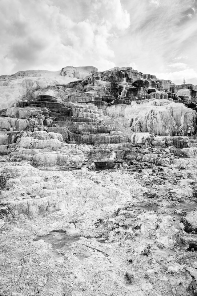 The calcified terraces of the Mammoth hot springs in Yellowstone.