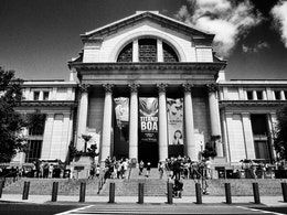 The National Museum of Natural History.