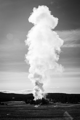 A huge steam column rising off of an eruption of Old Faithful in the distance.