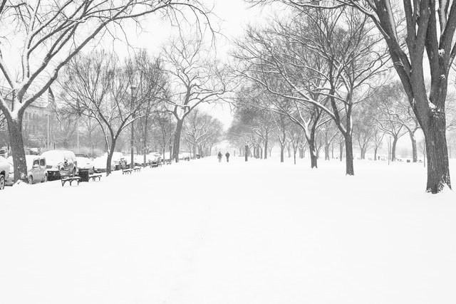 The National Mall, covered in snow.