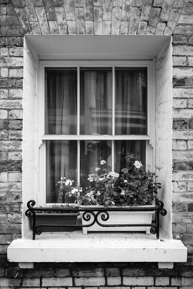 Flowers pots in front of a window.