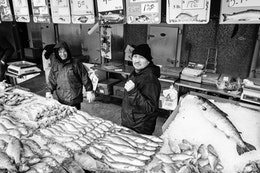 Fish salesmen mugging for the camera at the Maine Avenue Fish Market.