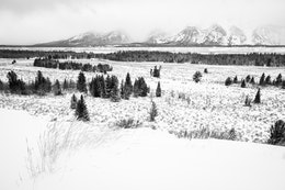 A distant view of a snowstorm obscuring the Teton Range, from the Teton Point Turnout.