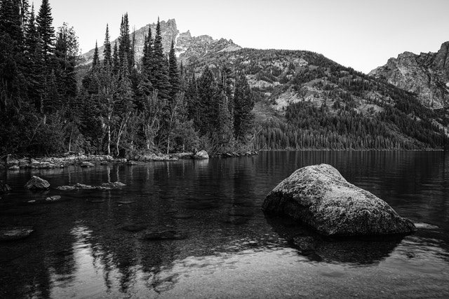 A big boulder in the water of Jenny Lake. In the background, trees lining the shores of Jenny Lake, and further in the distance, Teewinot Mountain.
