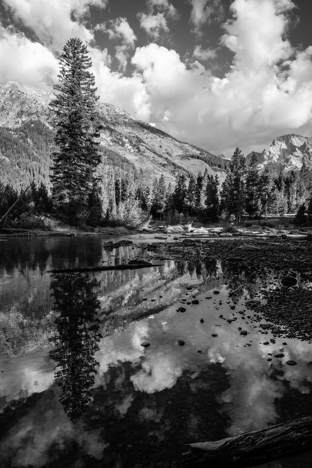 Clouds, trees and the Teton range, reflected of the water of String Lake's outlet.
