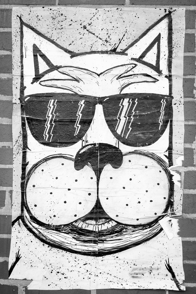 A poster of a cool dog wearing sunglasses.