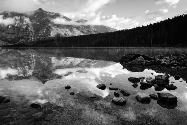 Rocks near the shore of Phelps Lake, with Albright Peak reflected in the water.