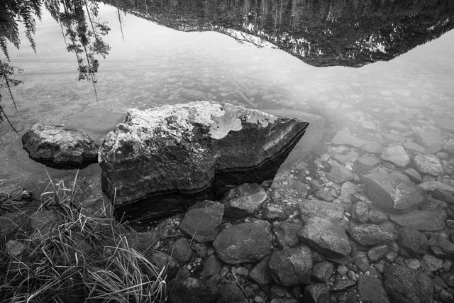 A rock half-submerged in Taggart Lake. Mountains and trees can be seen reflected in the water.