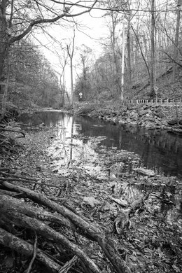 Valley Creek, at Valley Forge National Historical Park.