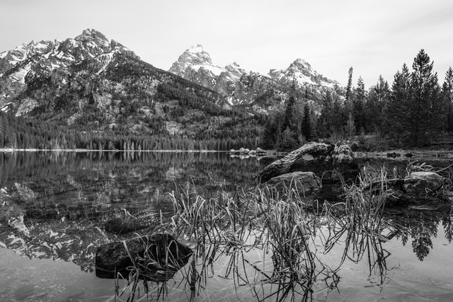 Taggart Lake. In the background, Nez Perce, Grand Teton, and Teewinot Mountain. In the foreground, rocks and dry reeds in the water.