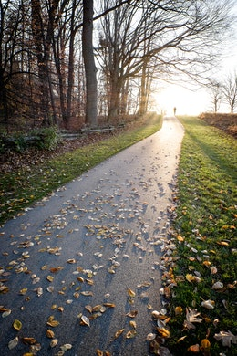 A foot path covered in leafs at Valley Forge National Park, with the sun setting in the background.
